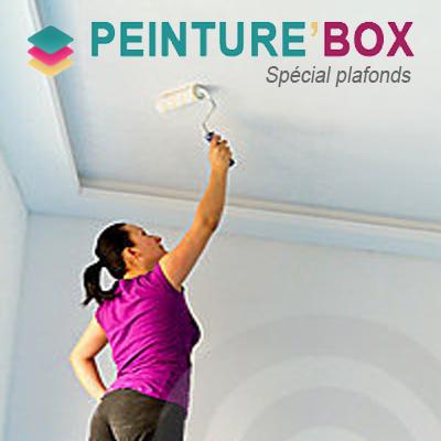 Plafond 39 box peinture box la qualit pro au meilleur prix for Peinture special plafond