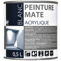 BATIR 1° Acrylique mat 0,5L blanc DELZ-ADD-51601270 de ADDICT